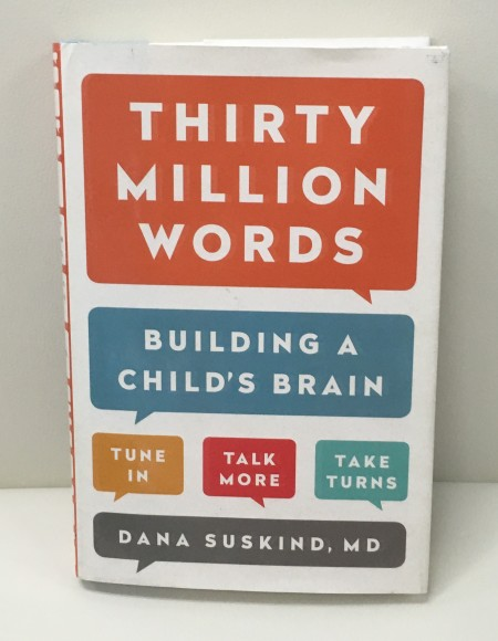 Dr. Dana Suskind's book, Thirty Million Words: Building a Child's Brain.