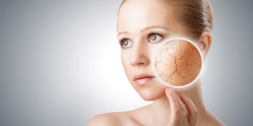 Dry Skin VS. Dehydrated Skin