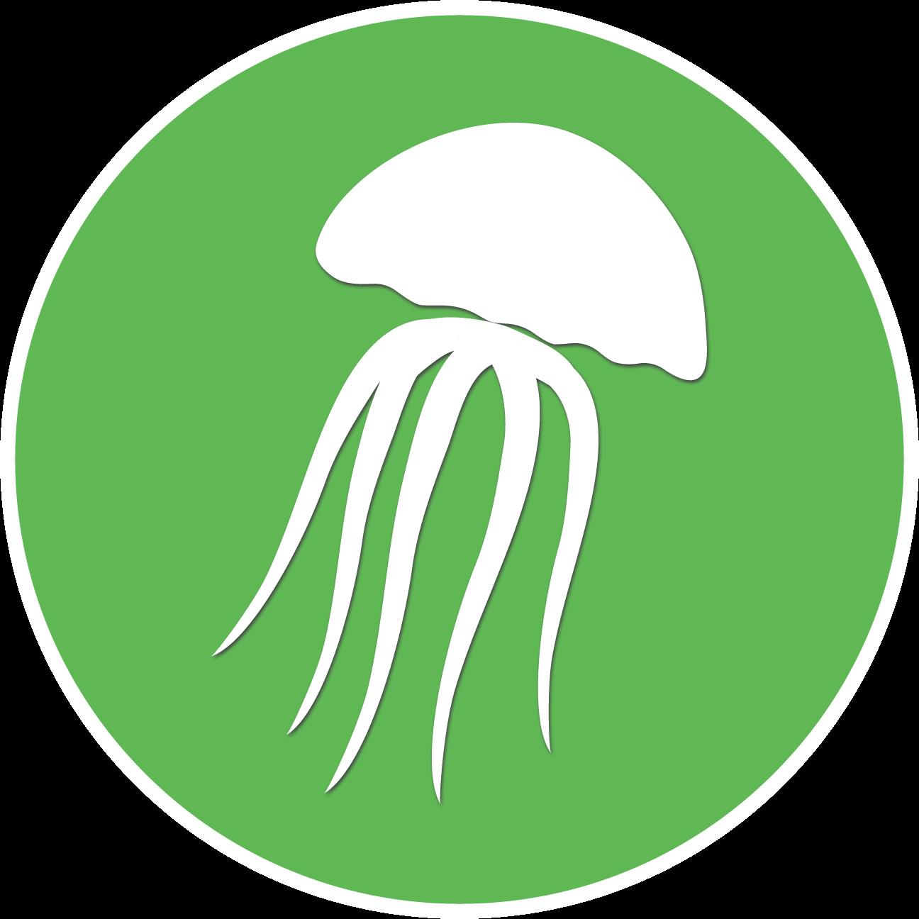 The Jellyfish Perdido Key, FL