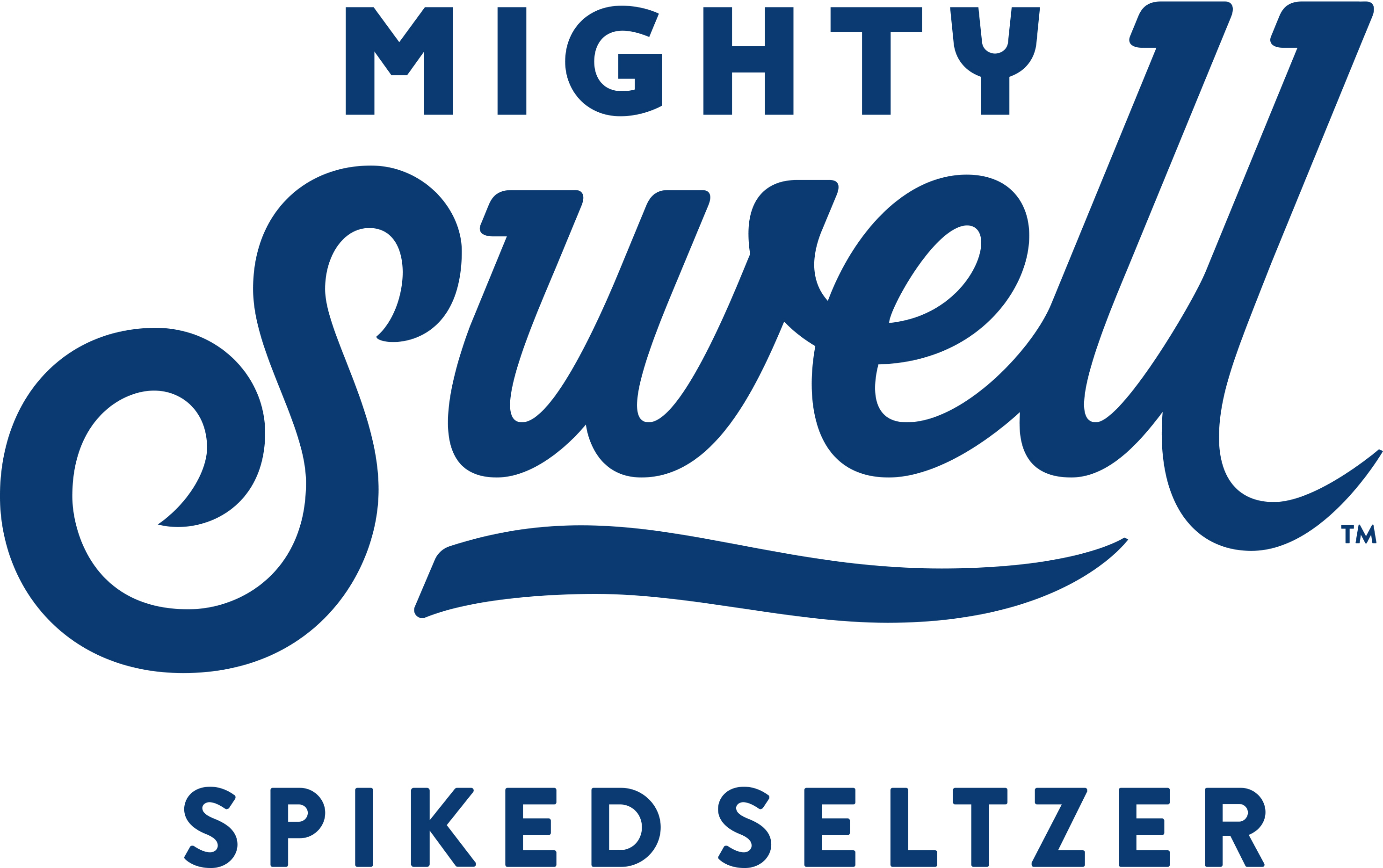 Mighty Swell Spiked Seltzer