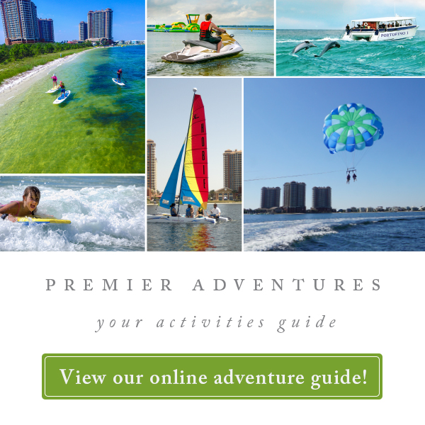 View our online adventure guide