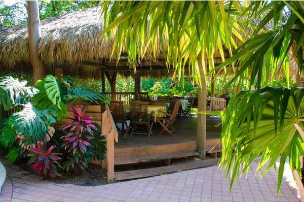https://z0sqrs-a.akamaihd.net/2574-superiorsmalllodging/600x400_images/Cranes_Beach_House_Boutique_Hotel_and_Luxury_Villas/Gardens%203%20(Copy).jpg