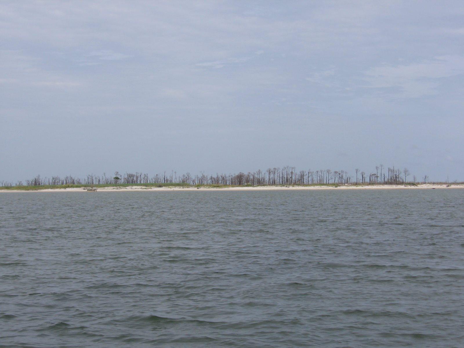Petit Bois Island