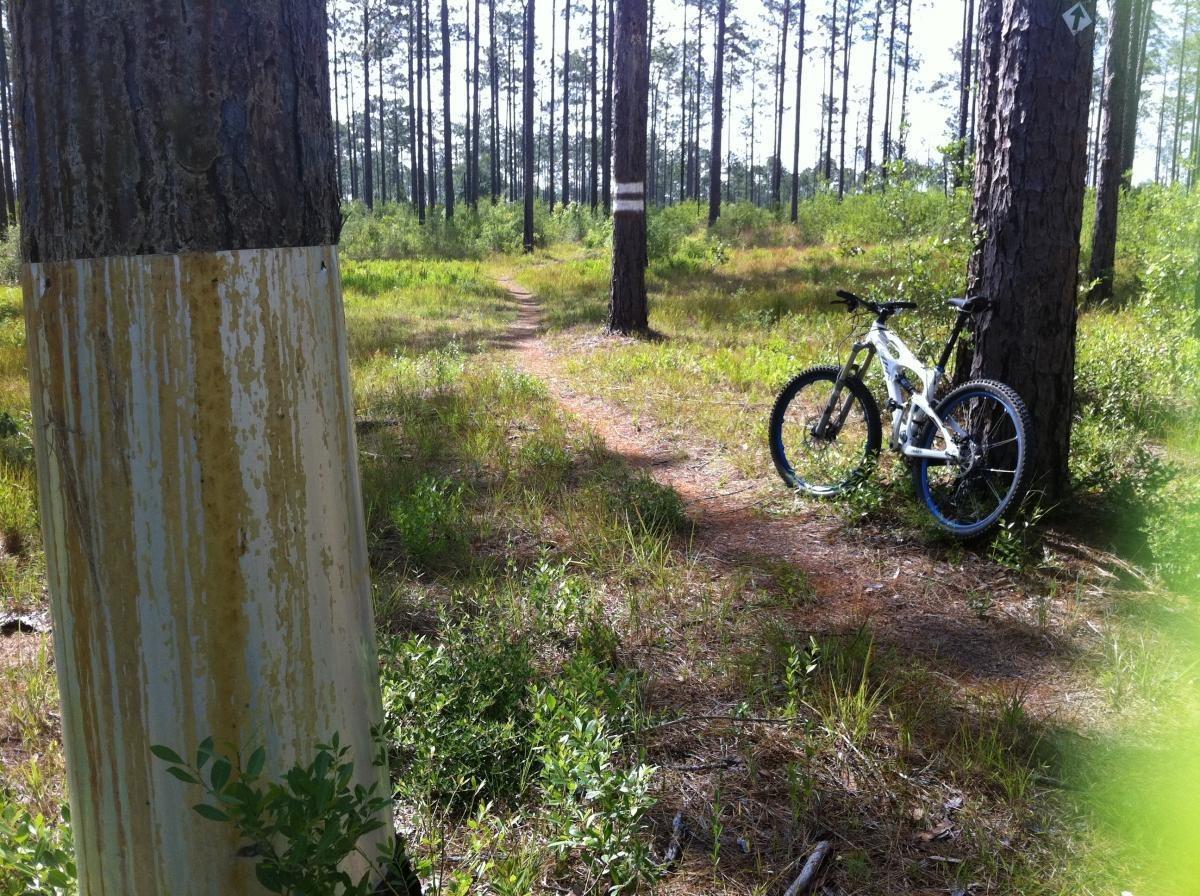 Bethel Mountain Bike Trail
