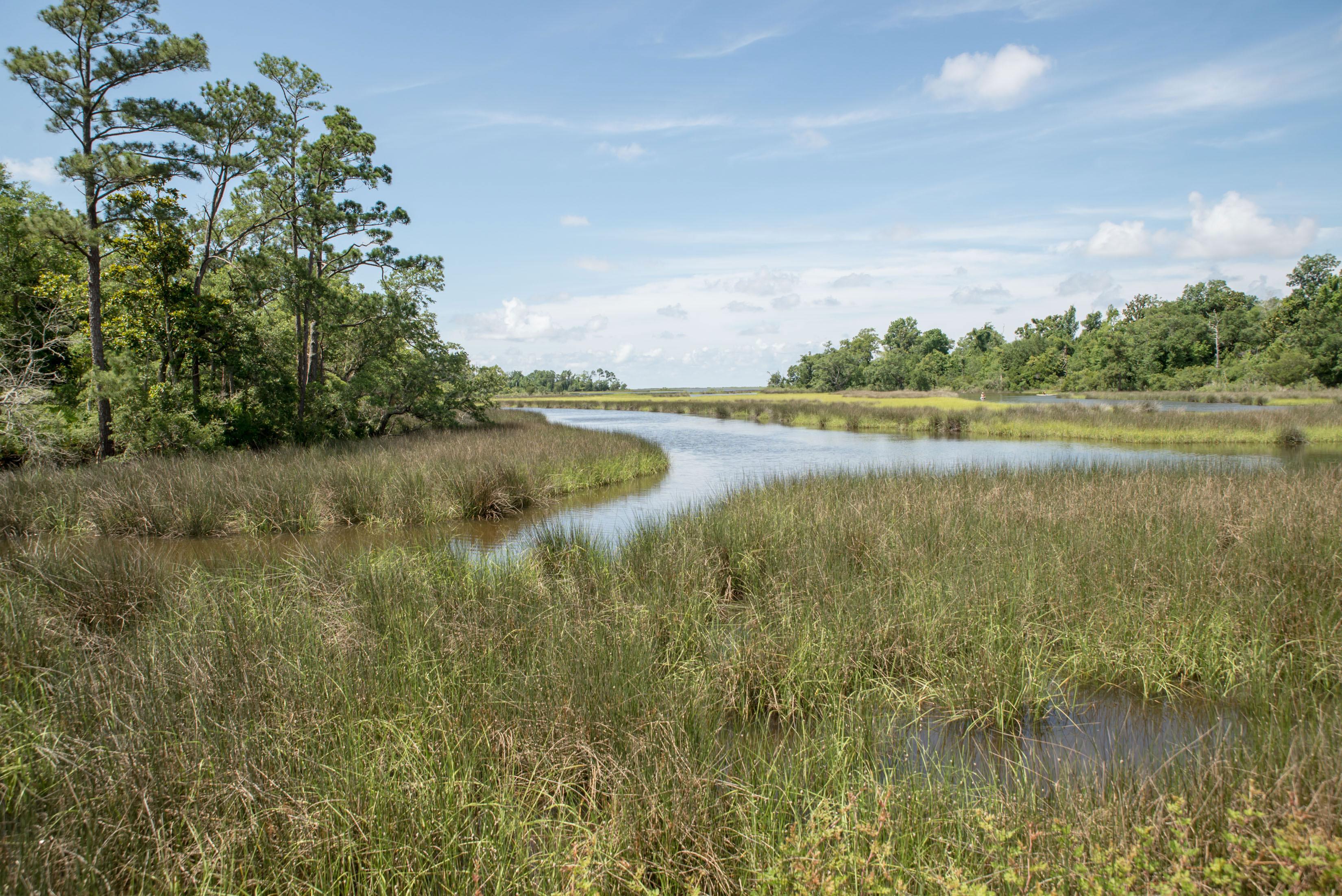 Davis Bayou Blueway