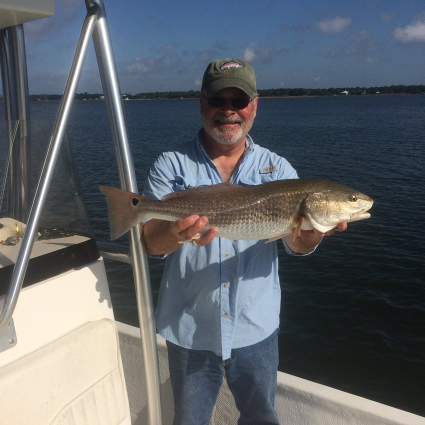 Fall is here and so are the Redfish.  After the first couple of cold fronts of the year.  Typically around October.  The Redfish really move into our bay systems and are ready to eat on all the bait trying to make its way out into the gulf.