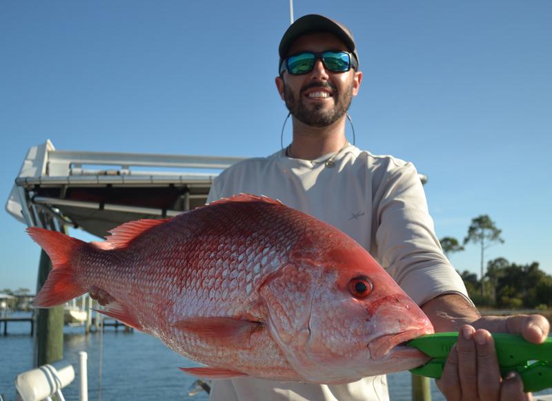 redd fish