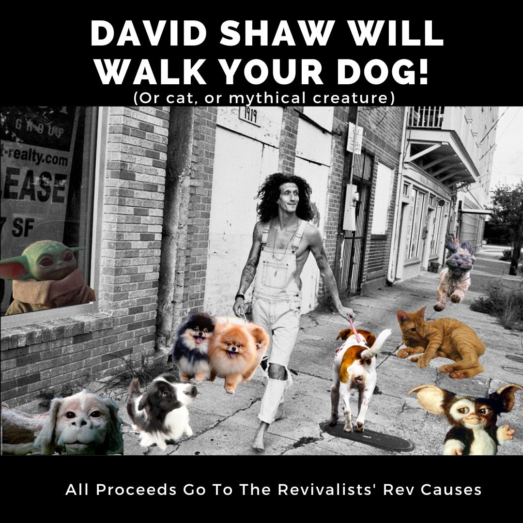 David Shaw: Dog Walker For Hire!