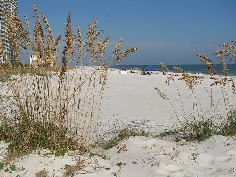 View of White Sandy Beach and Gulf of Mexico