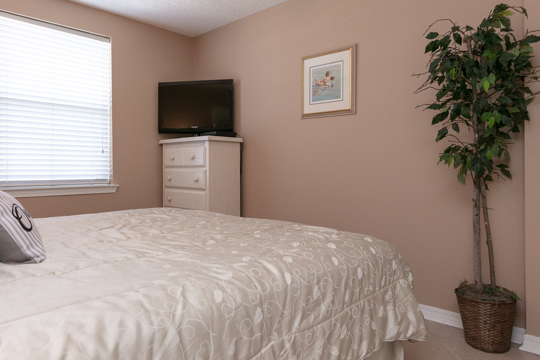 Master Bedroom with New TV