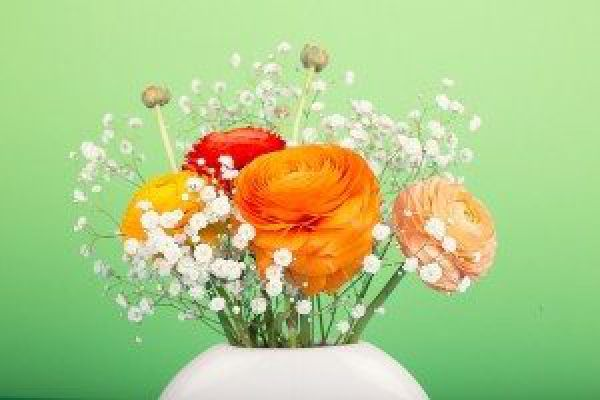 photo of orange, red, and yellow flowers and baby's breath in a white vase