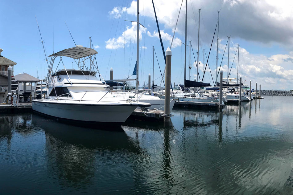 Palafox Marina boats on water ground level view