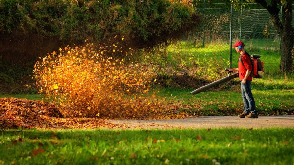 man cleaning up leaves with a leaf blower