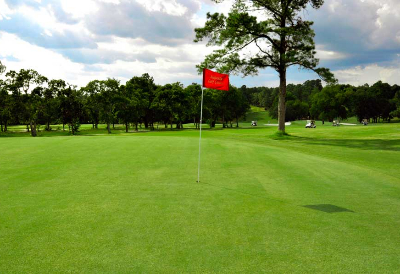 golf green with red flag