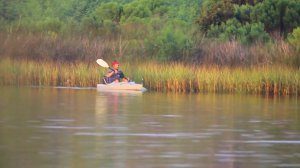 man in kayak on water in bayou
