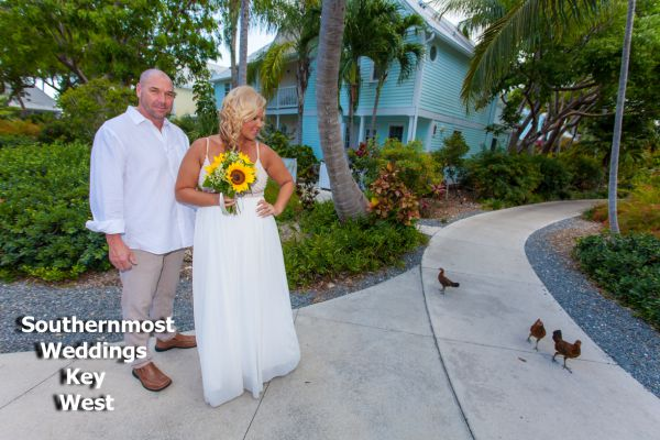 Key West Chickens join a wedding at the Truman Annex Butterfly Garden