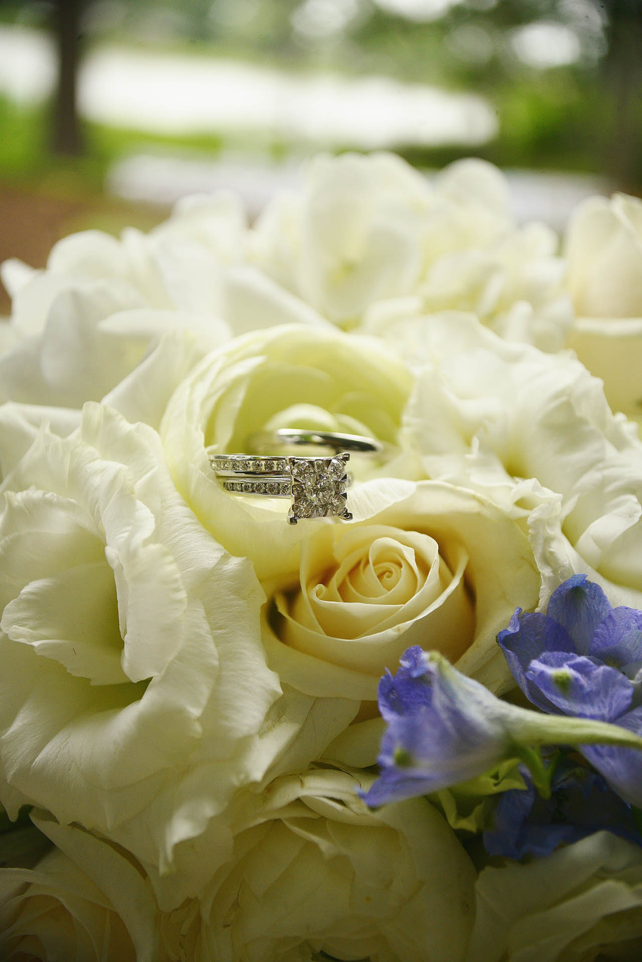 Flowers and the ring