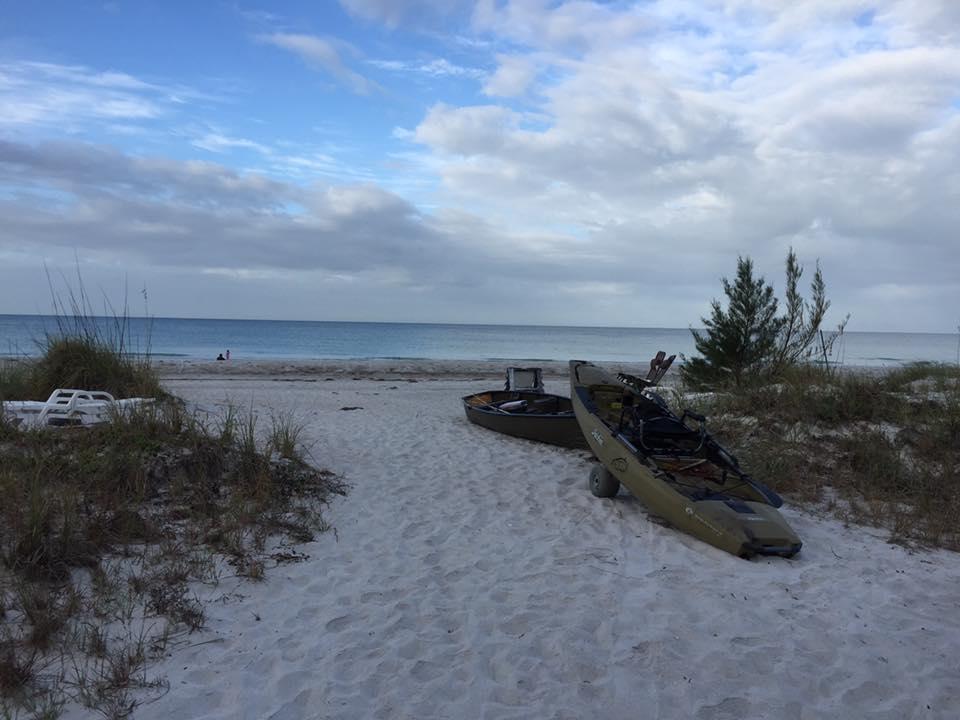 walkway to beach through dunes facing the Gulf