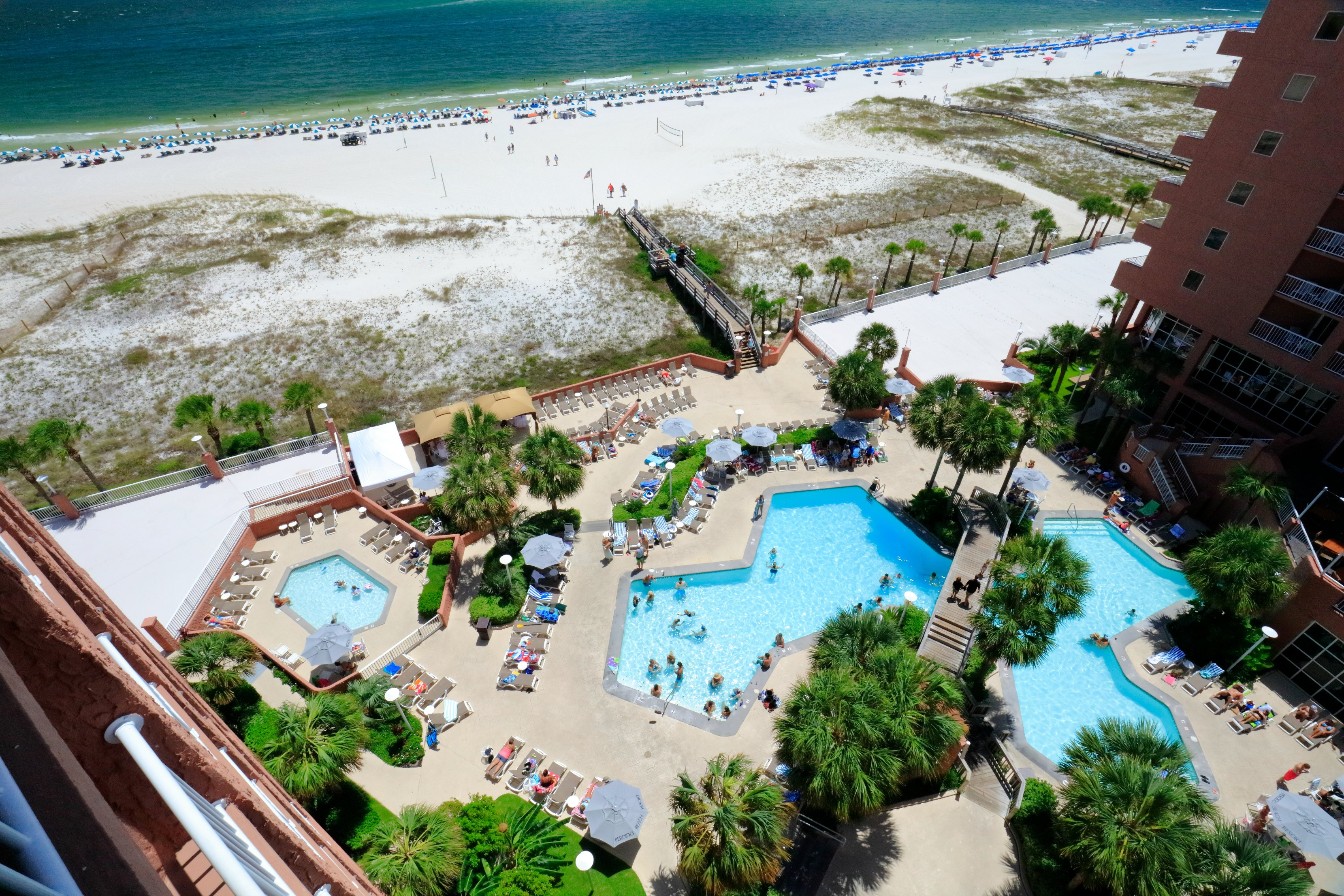 Perdido Beach Pool View Room featuring great view of the pool deck