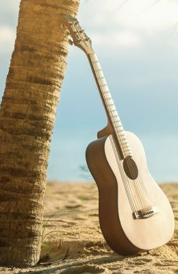guitar resting against palm tree on beach