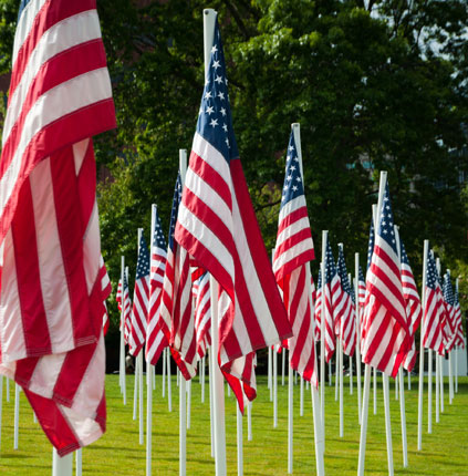 Image of American Flags