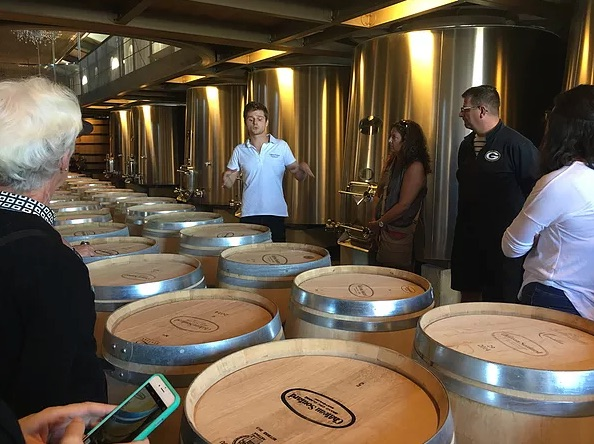 a group learning about wine, standing by barrels