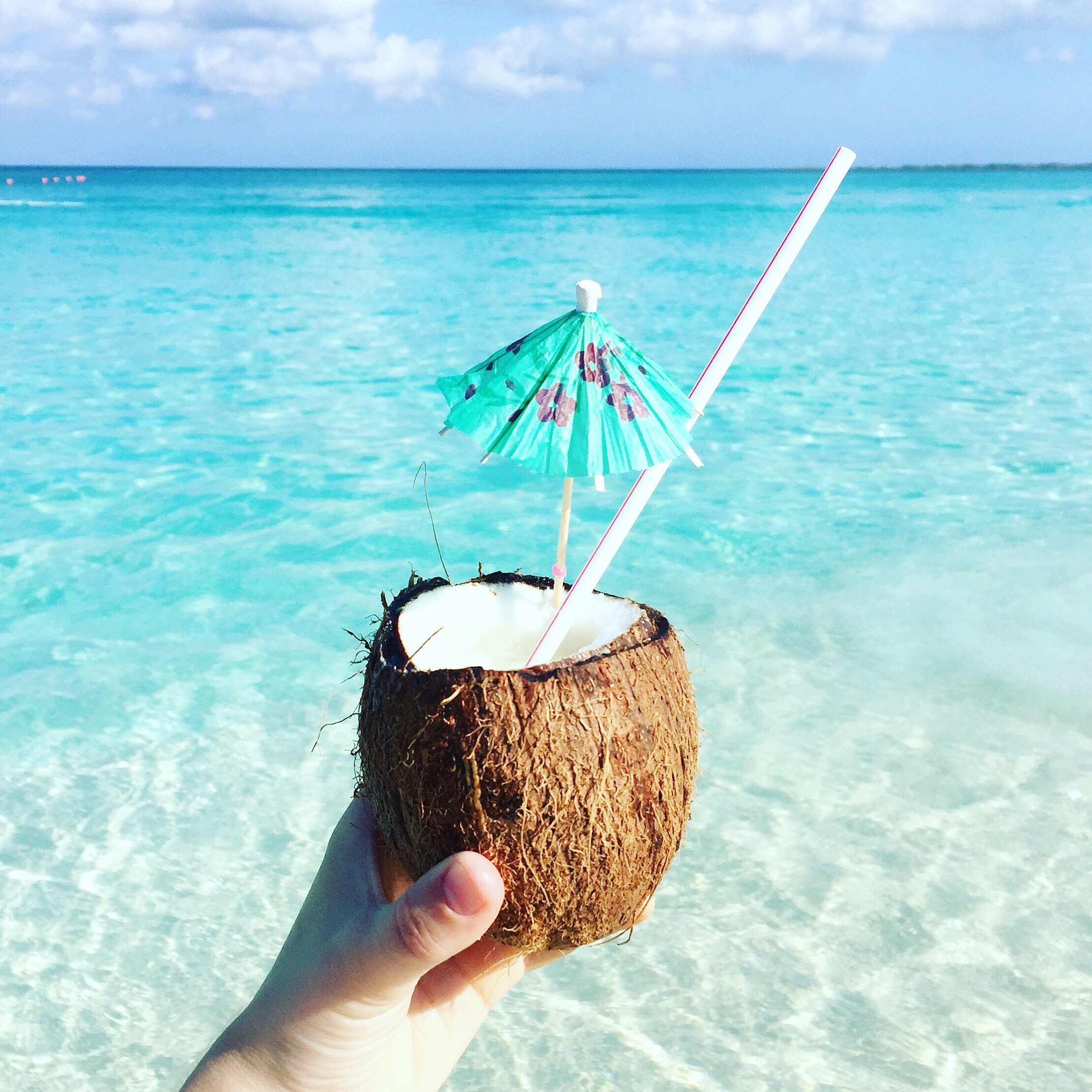 Tropical Coconut drink in the shell of a coconut while looking over the waters of Siesta Key Beach