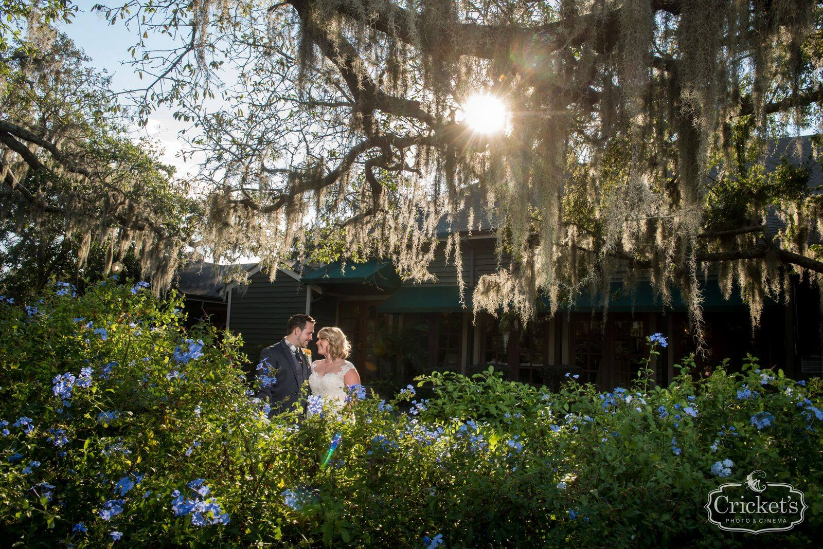 bride and groom pose behind bushes under tree with spanish moss