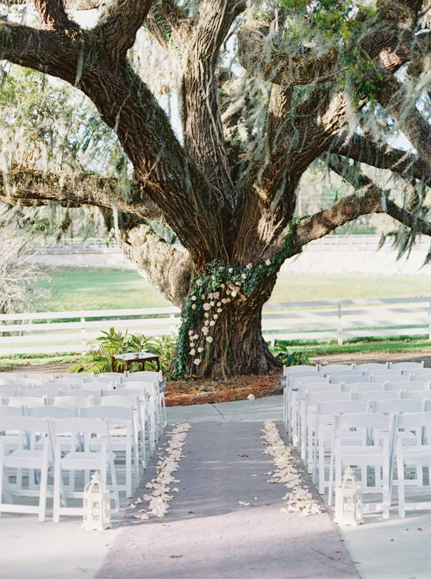 ceremony seating under old oak tree
