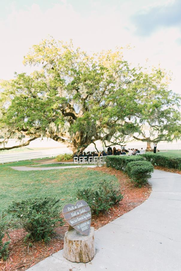 sidewalk leading to ceremony under tree
