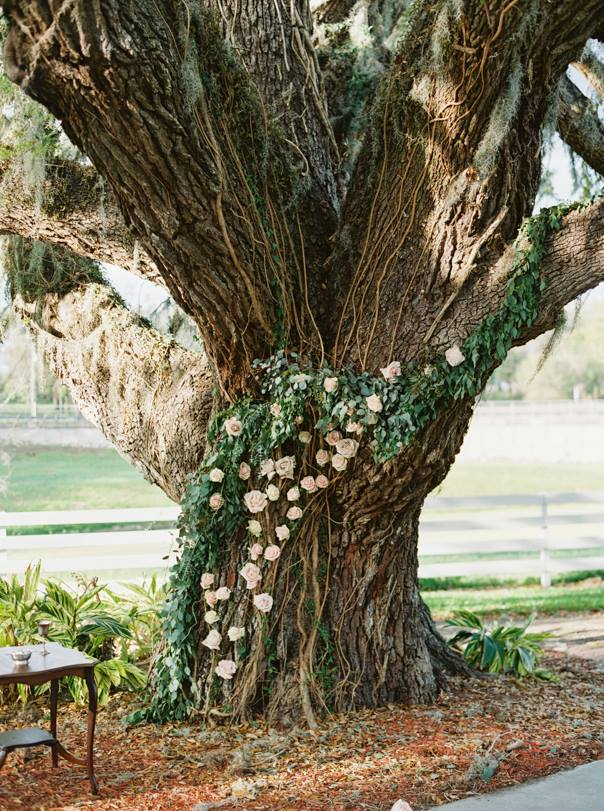 old oak tree decorated with wedding flowers