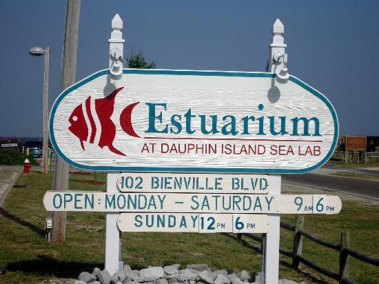 Estuarium at Dauphin Island Sea Lab
