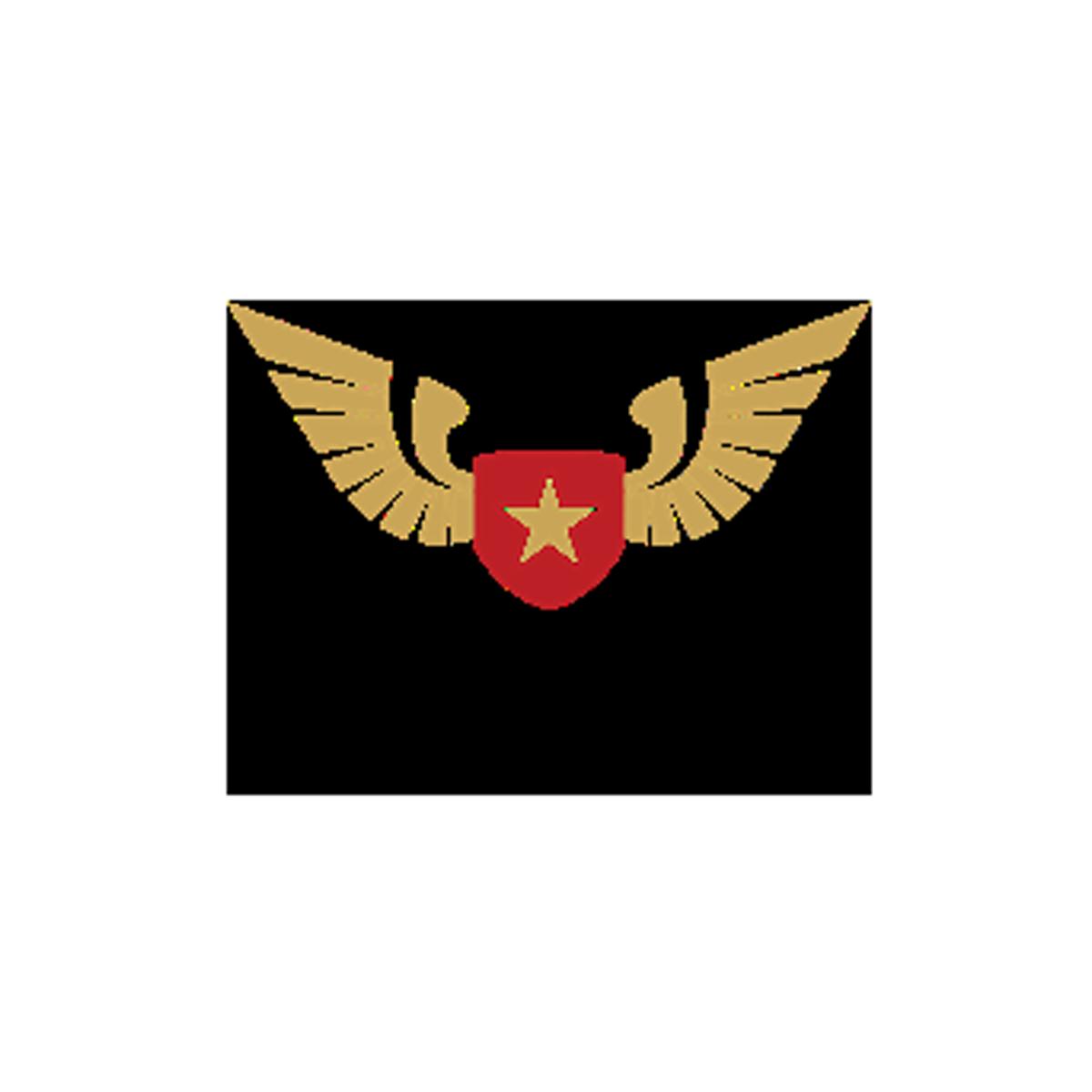 The Wingman Foundation