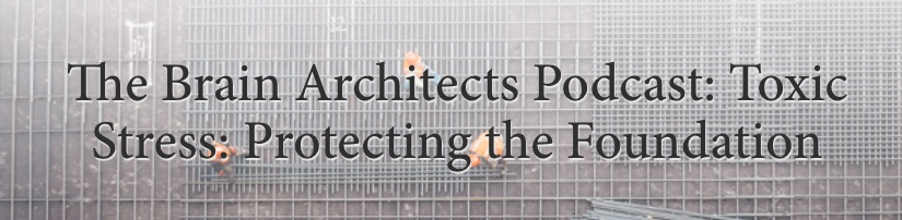 The Brain Architects podcast