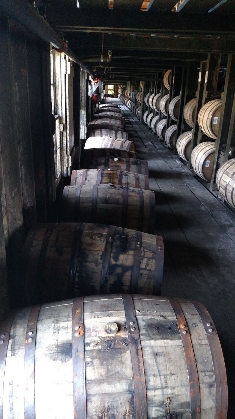 Whiskey Barrels resting