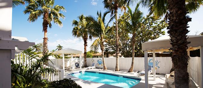 Pool underneath palm trees