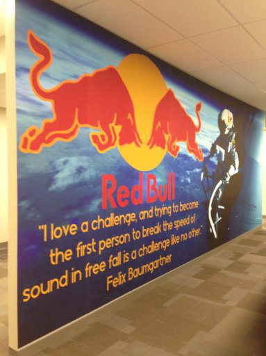GD Holdings Employee News New Red Bull Images