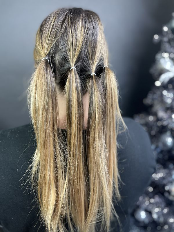 Hair divided into 4 sections