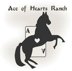 Ace of Hearts Ranch logo