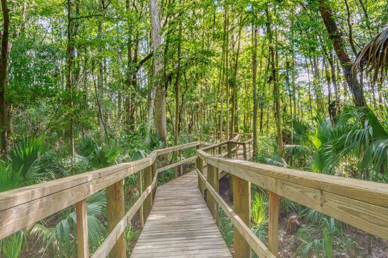 Wooden trail through wooded area of Nature Trail Florida