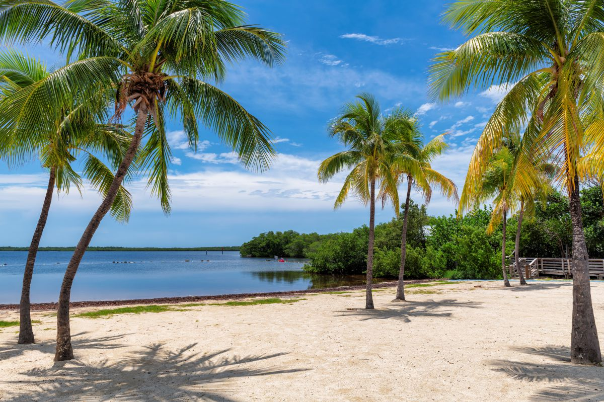 View of the beach in Key Largo