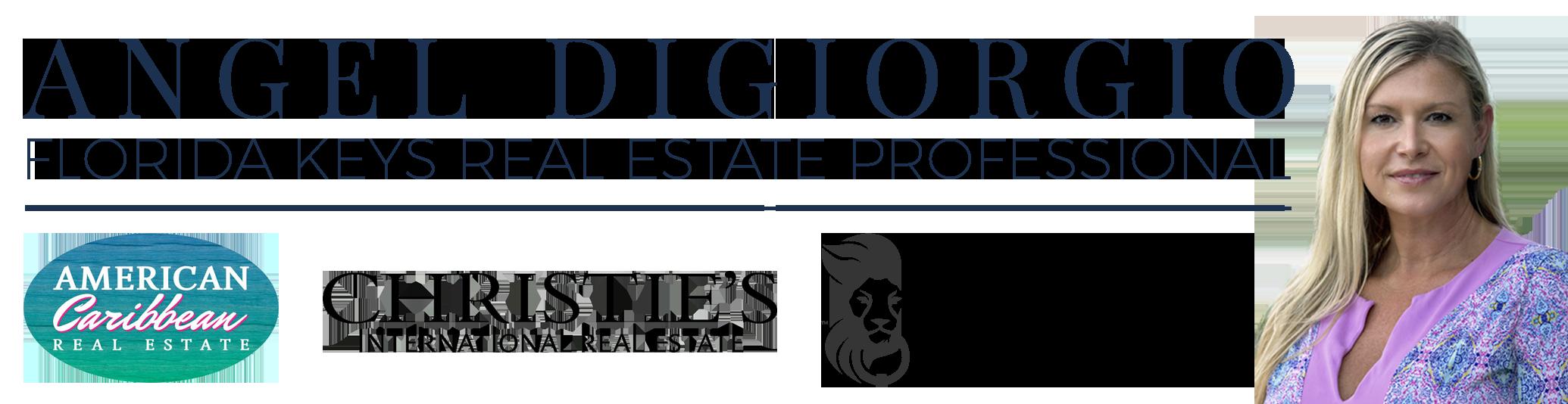 Banner for Angel Digiorgio Florida Keys Real Estate Professional