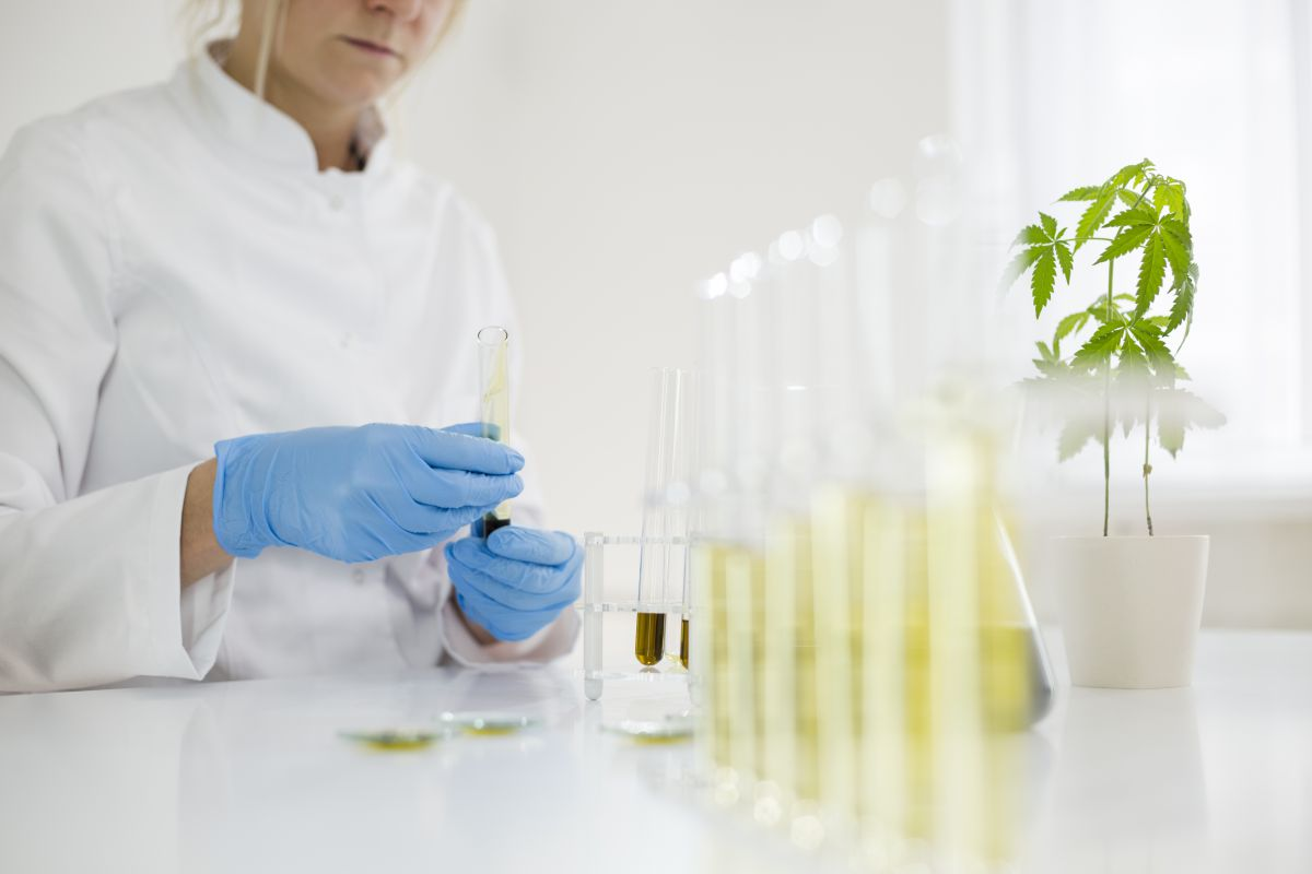 Lab assistant making CBD oils
